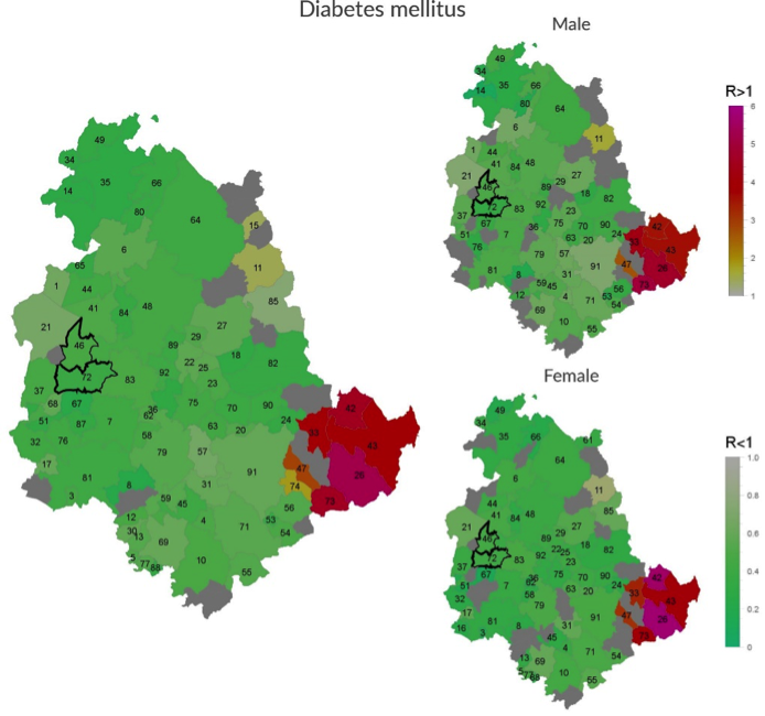 Incidence of Diabetes mellitus in Umbria Region