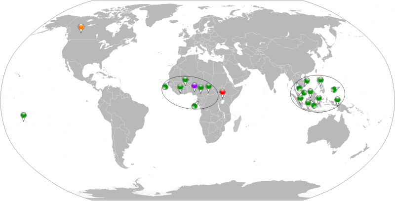 Figure 1. Geographical global vision of countries involved in ZIKV active transmission or imported cases. Period 1954-2013. Red map pin indicates the first identification of ZIKV in non-human primate, Uganda 1947. Purple map pin indicates the first human case of ZIKV in Nigeria in 1954. Green map pins indicate the human cases in the period 1954-2013 except the first one. The orange map pin indicates the imported case in Canada, 2013. Black circles virtually collect the human cases in an African and an Asian zone.